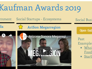 Roger Kaufman Awards 2019: Civil society, Megarregions, Market-making innovation