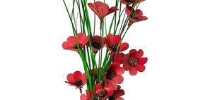 41103 6 Stem Chinese Red Poppy