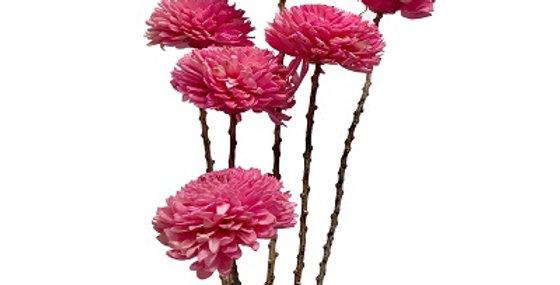 41057 6 Stem Pale Pink Dahlia Flower Branches