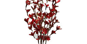 41077 5 Palm Lily Red/Gold Bunch