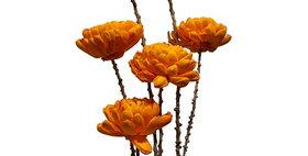 41014 6 Stem Chrysanthemum Flower Branches - Tangerine