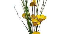 41045 6 Stem Sunkist Poppy Branches