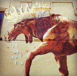 lowertown moose