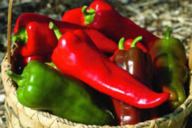 Carmen Italian Frying Pepper