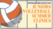 2019 summer clinic logo.png