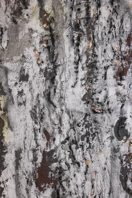 detail: wood and metal, 2013