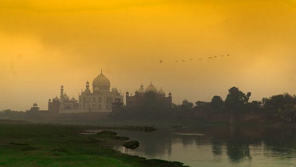 Indian Wonder.jpg