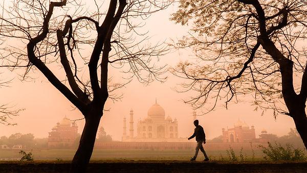 A walkl through the dreams.jpg