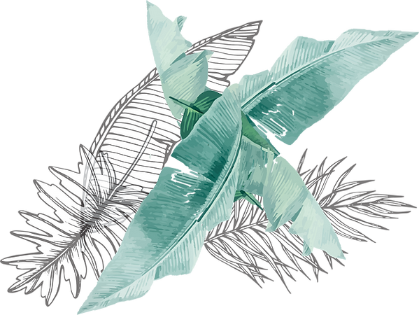 banana leaf2_edited.png