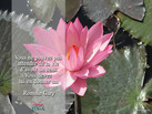 PADMA YOGA - LOCANA MUDRA 34.jpg