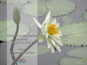 PADMA YOGA - LOCANA MUDRA 45 .jpg