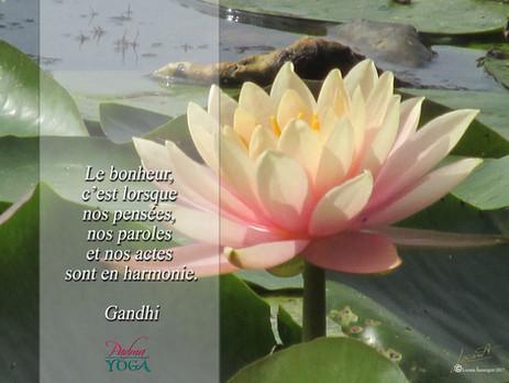 PADMA YOGA - LOCANA MUDRA 46 .jpg