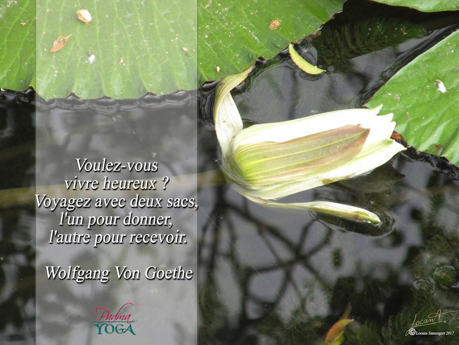 PADMA YOGA - LOCANA MUDRA 25 .jpg