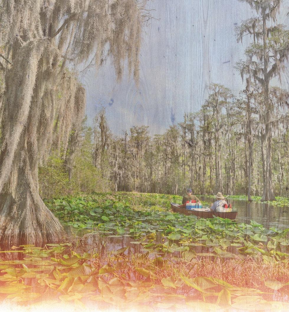 Lily-pads-Okefenokee-Swamp-Georgia_edite