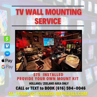 TV Mount Installation Service
