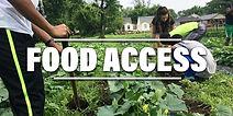 FOOD ACCESS 3 (2).jpg