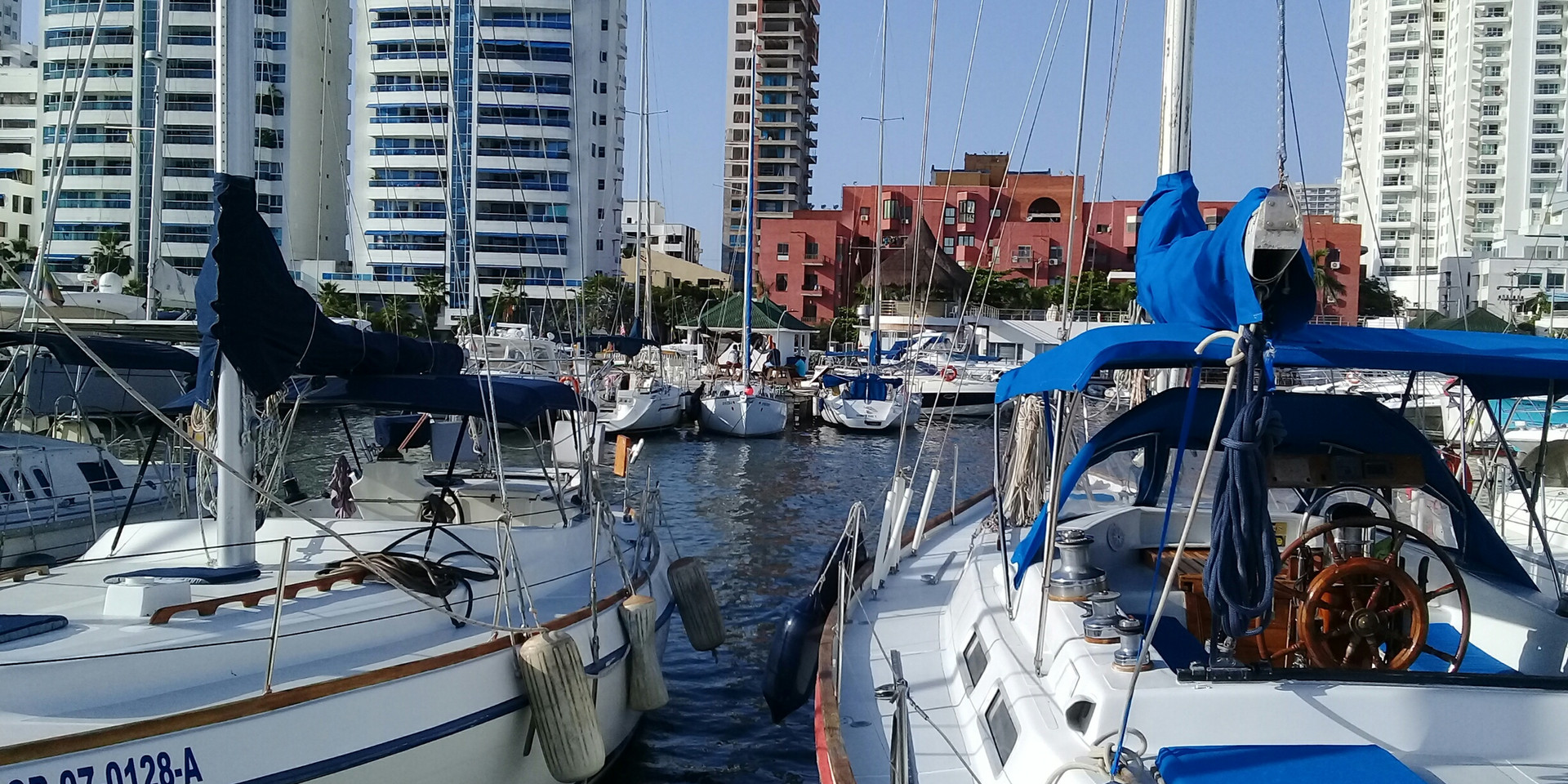 local sailboats.jpg