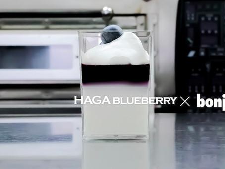波賀ブルーベリー × ボンジュール洋菓子店