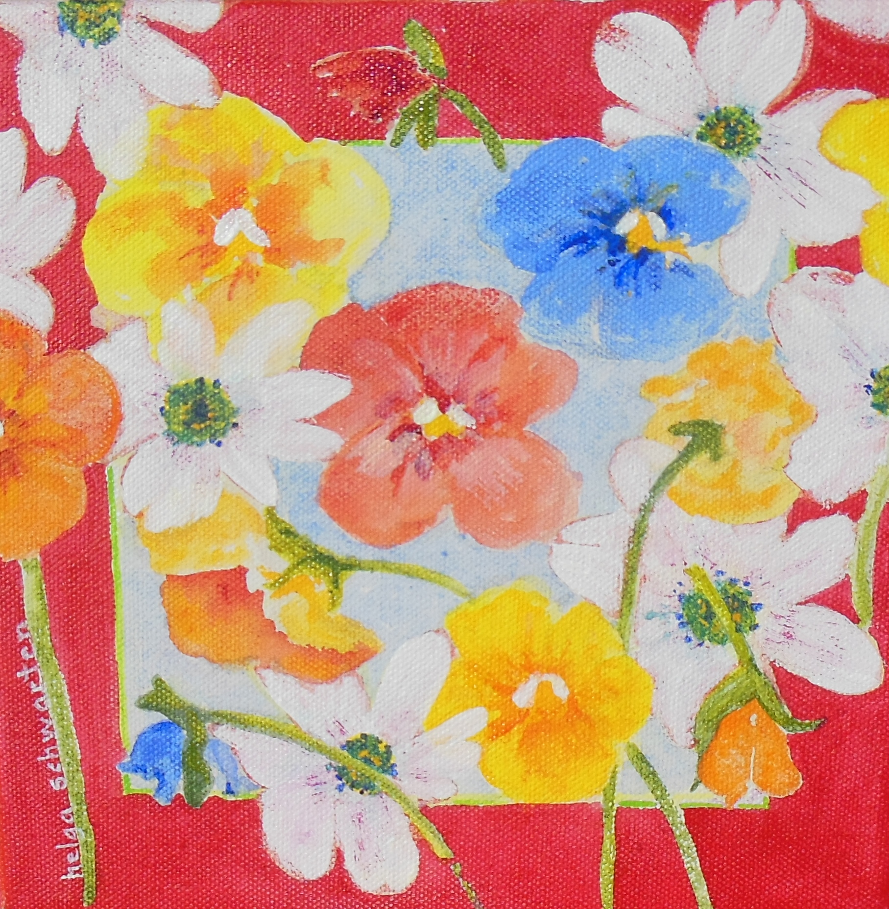 Pansies in the Red