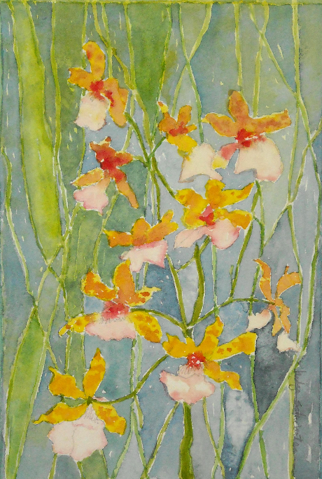Don's Orchids