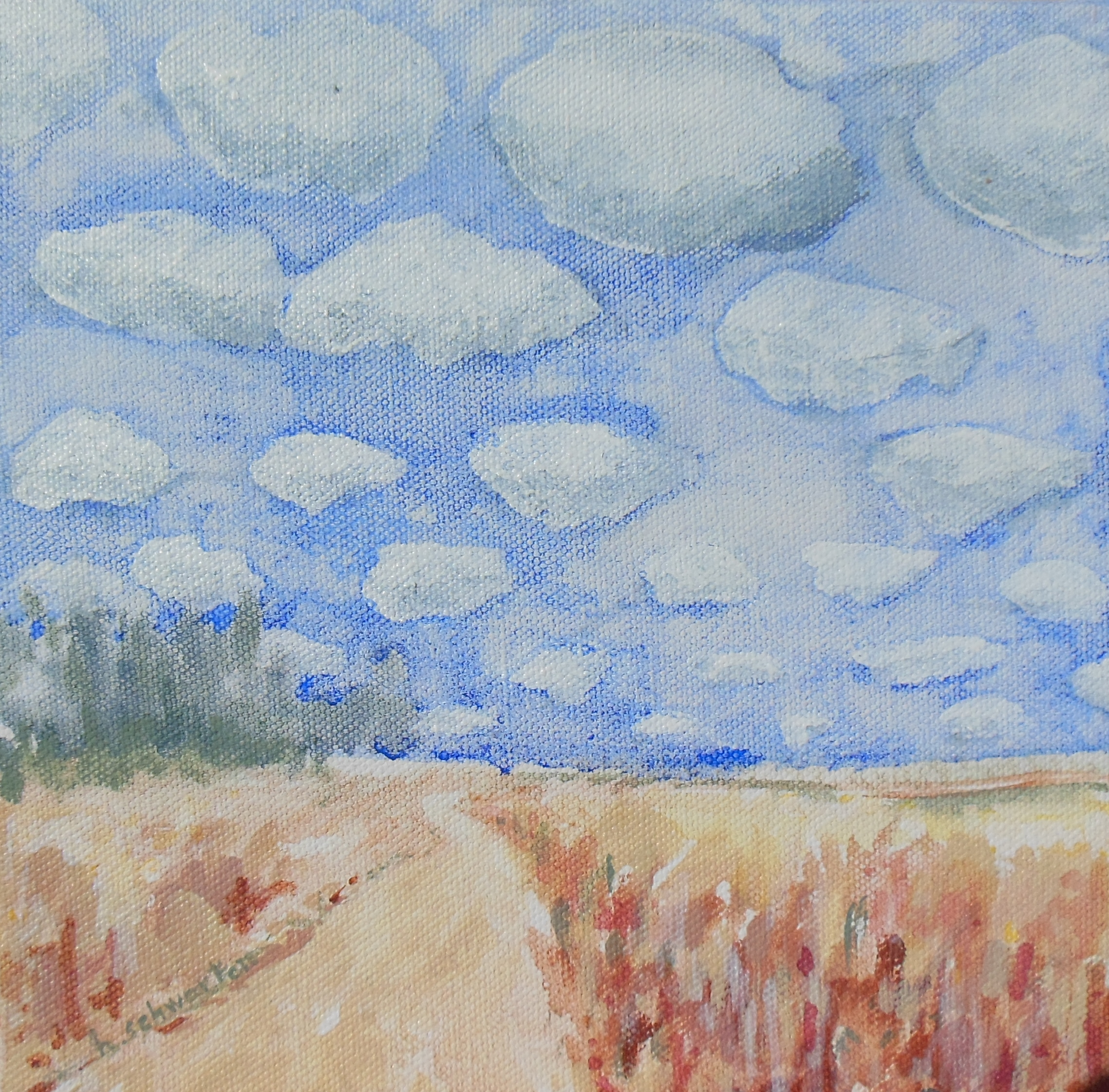 Middlefork Skies