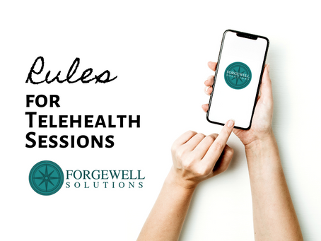 Rules for Telehealth Sessions