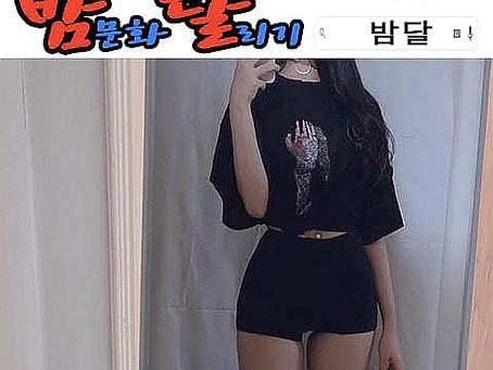 강남 텐카페 구구단 2020년 01월 14일 화요일 여직원 147명 출근 현황!!