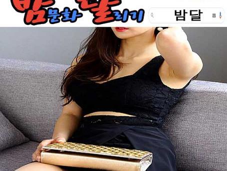 강남룸싸롱 2019년 12월 30일 월요일 여직원 116명 출근 현황!!