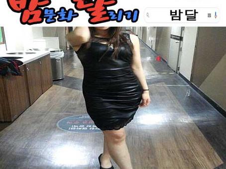 강남 텐카페 장난감 2019년 12월 24일 화요일 여직원 147명 출근 현황!!