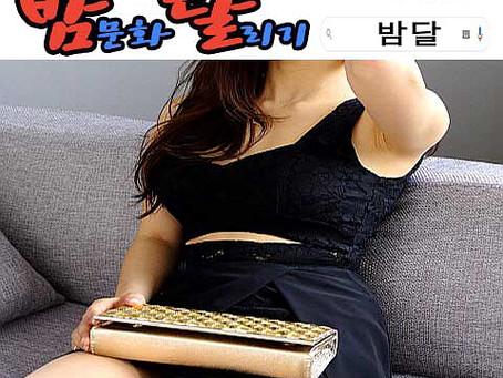 강남 하이킥 레깅스룸 2019년 12월 27일 금요일 여직원 117명 출근 현황!!