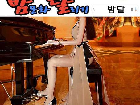 강남세인트 룸싸롱 2019년 12월 31일 화요일 말일 여직원 127명 출근 현황!!