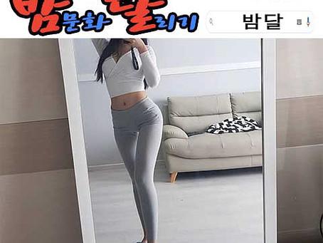 강남 텐카페 장난감 2020년 01월 07일 화요일 여직원 147명 출근 현황!!