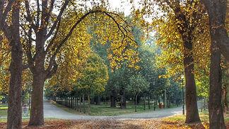 Parque-El-Parral-Burgos-45.jpeg