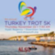 turkey trot 600PX square.jpg