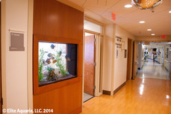 Stamford Hospital 10 resize_edited.jpg
