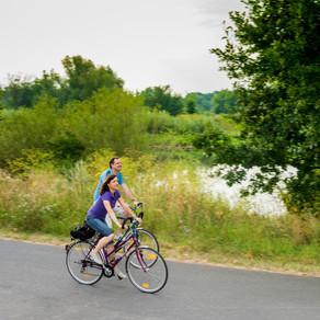 NEU: Geführte Fahrradtouren rund um Dettelbach mit Willi Barthelmes