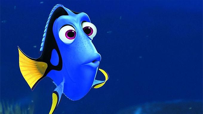 Tenemos memoria de pez y es culpa de Internet