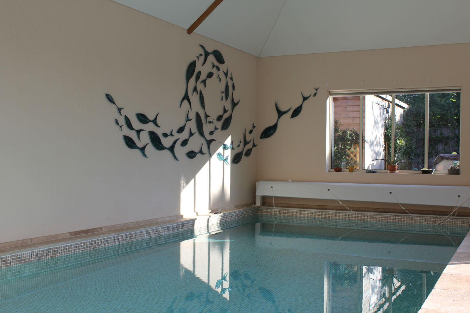 Pool and glass fish