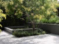 Pool with flowering tree.jpg