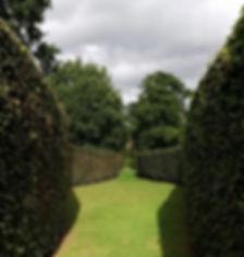 Studio Cullis Chatsworth House serpentine hedges