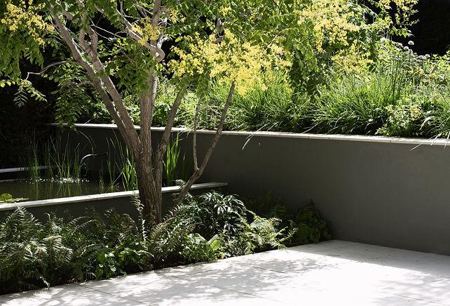 studio cullis george cullis flowering tree hanging over water