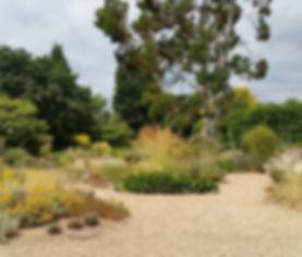 Studio Cullis Beth Chatto dry garden