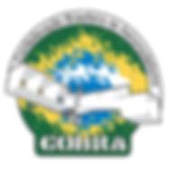 COBRA grande (1).jpg