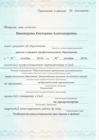 екатеринавинокурова_диплом_фобии_вкладка