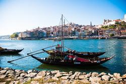 river-douro-1267352_640