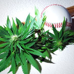 Major Baseball League is taking off marijuana from their banned drug list