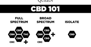 The Pros and Cons of CBD Products