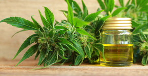 CBD vs. THC: What's the Difference