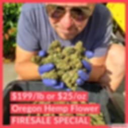 buy lbs of cbd flower From Oregon Hemp F