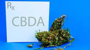What is CBDa?